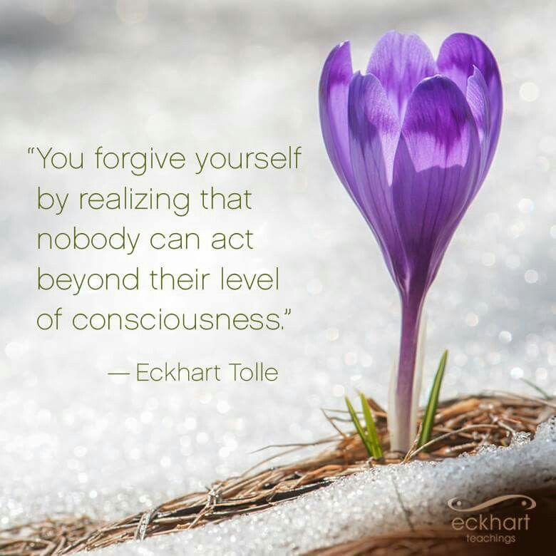 FORGIVENESS - THE GREATEST GIFT YOU CAN EVER GIVE TO YOURSELF • Wisdom to Nourish