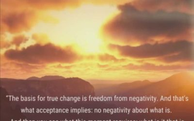 FREEDOM FROM NEGATIVITY